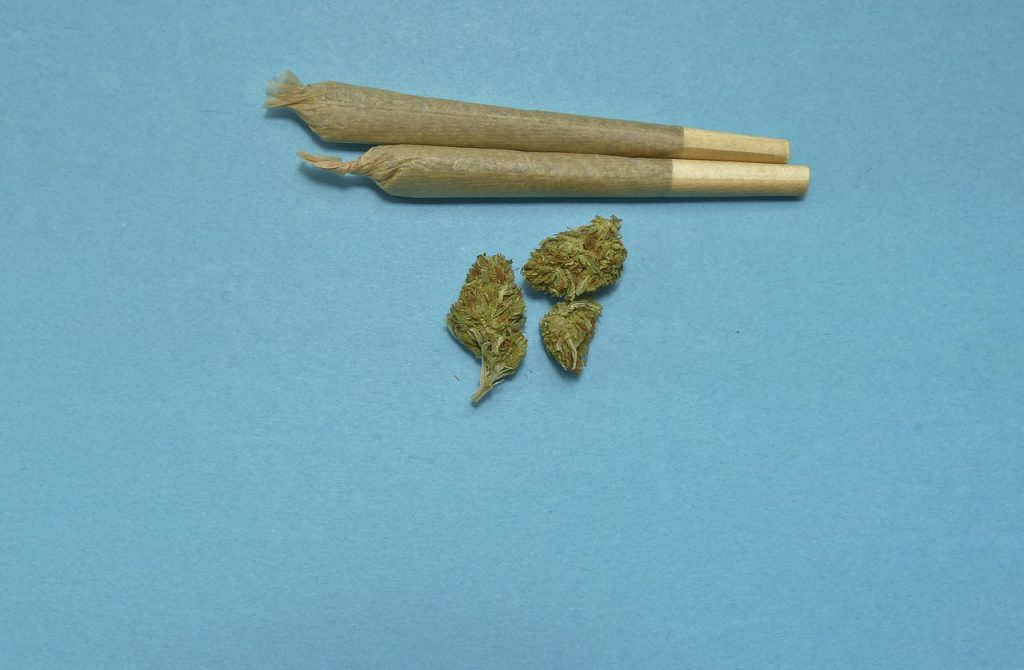 Beginner's Guide On How To Properly Roll A Joint