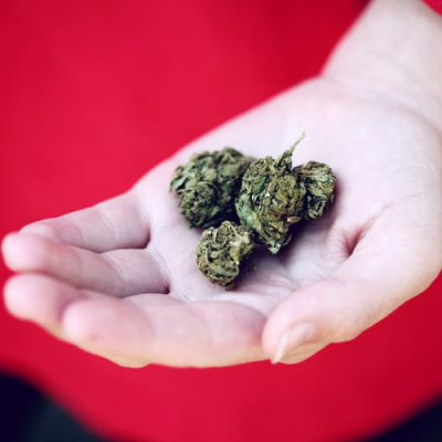 How To Tell If Your Weed Is Bad